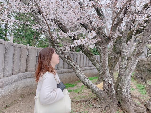 桜が満開です🌸 今日は、過去のアラサー男子の成婚事例から、「初めての婚活男子へ」女性とお付き合いしたことが無くてもだいじょうぶです。(*^_^*)