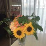 🍉婚活中の皆様・ブログをご覧の皆様へ 暑中お見舞い申し上げます🍉 婚活中の夏休みの過ごしかたについて🎐